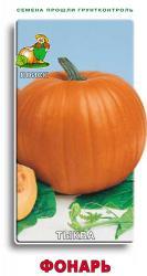 Тыква крупноплодная Фонарь (А) 10шт арт 675652 Овощи ЦП