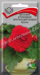 Бегония клубневая крупноцветковая Красная в упаковке 5шт арт738458