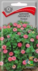 Цинния лиллипут Розовая в упаковке 0.4гр арт590011