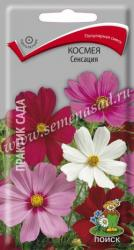 Космея Сенсация в упаковке 0.3гр арт300638
