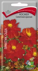 Космея Солнечная красная в упаковке 0.1гр арт300653