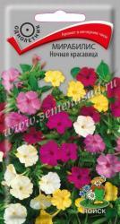 Мирабилис Ночная красавица в упаковке 2.5гр арт360678