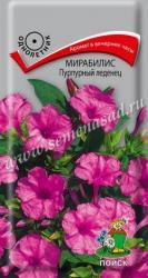 Мирабилис Пурпурный леденец в упаковке 1гр арт692169